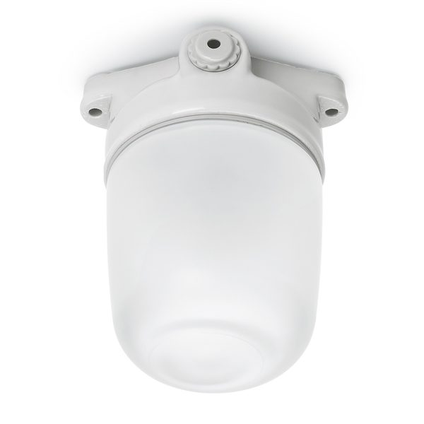177048-plafondlamp-100W-porselein
